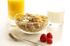 frukostera sunt royaltyfri foto