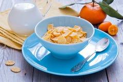 frukosthavren flagar sunt Royaltyfri Foto