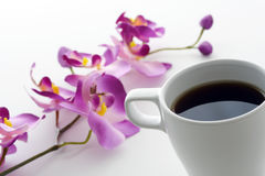 frukostmorgon Royaltyfri Bild