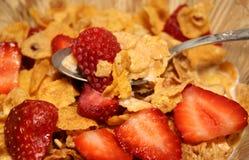 frukostsädesslag royaltyfria foton