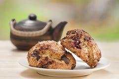 frukostscones Royaltyfri Fotografi