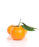 Frukt Arkivfoto