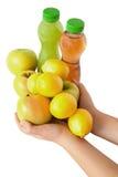 Frukt Fotografering för Bildbyråer