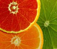 frukt 3 royaltyfri foto
