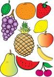 frukt Vektor Illustrationer