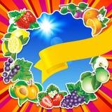 frukt- bakgrund Royaltyfria Foton