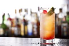 Frukt cocktail Arkivbild