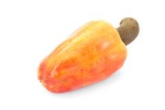 Frukt för brasilianCaju kasju Arkivfoto