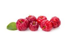 Frukt för den Barbados körsbäret (Malpighiaglabraen L ), arkivbilder