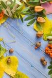 Frukt för höst för skola för baksida för blyertspennabokbegrepp Arkivfoto