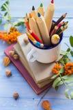 Frukt för höst för skola för baksida för blyertspennabokbegrepp Royaltyfri Foto