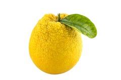 Frukt för söt apelsin med sidor. Royaltyfri Fotografi