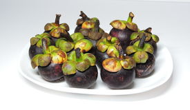 Frukt för tolv mangosteen Royaltyfri Foto
