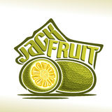 Frukt för vektorlogoJackfruit Arkivbild