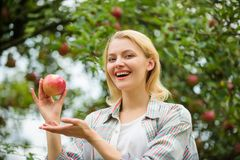 frukt f?r v?rsk?rdsommar frukttr?dg?rd tr?dg?rdsm?stareflicka i ?ppletr?dg?rd vitamin och bantamat sunda t?nder hunger fotografering för bildbyråer