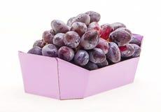 Frukt i färgrik bunke Royaltyfri Foto