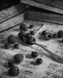 Frukt i tappningtabellinställning med antik utrustning med annonsen Royaltyfria Bilder
