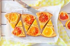 Frukt- kaka med apelsiner arkivbild