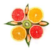 frukt- kompass Fotografering för Bildbyråer