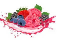 Frukt med färgstänk Royaltyfri Bild