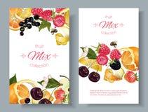 Frukt- och bärbaner royaltyfri illustrationer