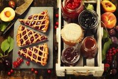 Frukt och bäret sitter fast och syrliga stycken av frukt Royaltyfri Foto