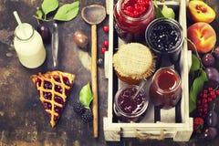 Frukt och bäret sitter fast och syrliga stycken av frukt Royaltyfri Fotografi