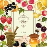 Frukt- och bärram royaltyfri illustrationer