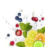 Frukt och färgstänk av vatten Arkivfoto