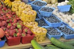 Frukt och grönsak fotografering för bildbyråer