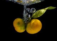 Frukt och grönsaker Royaltyfria Foton