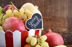 Frukt och grönsaker för tacksägelsenedgångskörd Arkivbild