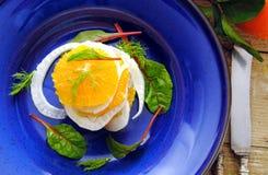 Frukt och grönsaksallad Fotografering för Bildbyråer