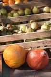 Frukt på marknaden Royaltyfri Fotografi