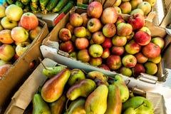 Frukt på marknadsplatsen fotografering för bildbyråer