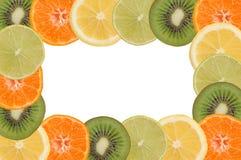 frukt- ram Arkivbild