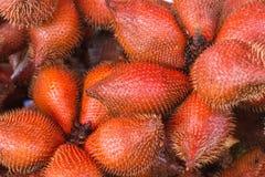 frukt Salacca eller zalacca Det finns båda söt smak Royaltyfri Bild