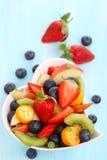 frukt- salladsommar Arkivbilder