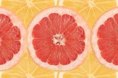 frukt- sammansättning Arkivbild