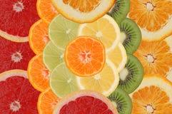 frukt- sammansättning Arkivfoton
