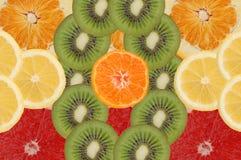frukt- sammansättning Royaltyfria Foton