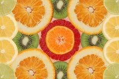 frukt- sammansättning Royaltyfria Bilder