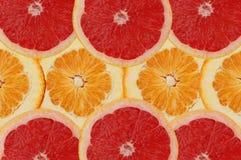 frukt- sammansättning Royaltyfri Foto