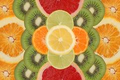 frukt- sammansättning Fotografering för Bildbyråer