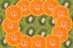 frukt- sammansättning Royaltyfri Fotografi