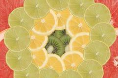 frukt- sammansättning Arkivbilder