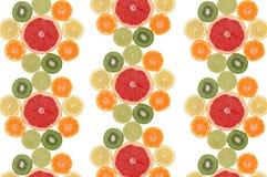 frukt- sammansättningsblomma Fotografering för Bildbyråer