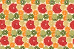 frukt- sammansättningsblomma Royaltyfri Foto