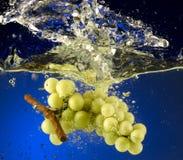 Frukt som kastas i vatten Arkivbild
