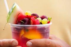 Frukt stansar Lemonade royaltyfri fotografi